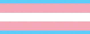 ico_bandeira_trans